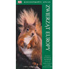Pocket Nature Wild Animals (in Polish)